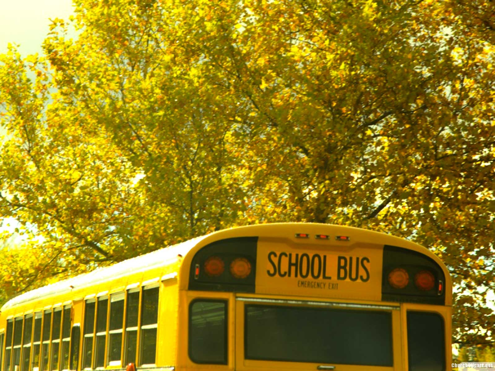 Vintage School Bus Background